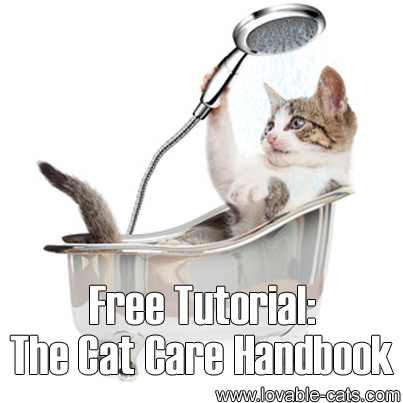 Free Tutorial: The Cat Care Handbook