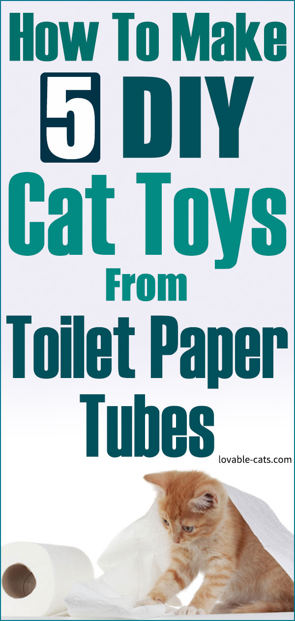 How To Make 5 DIY Cat Toys From Toilet Paper Tubes