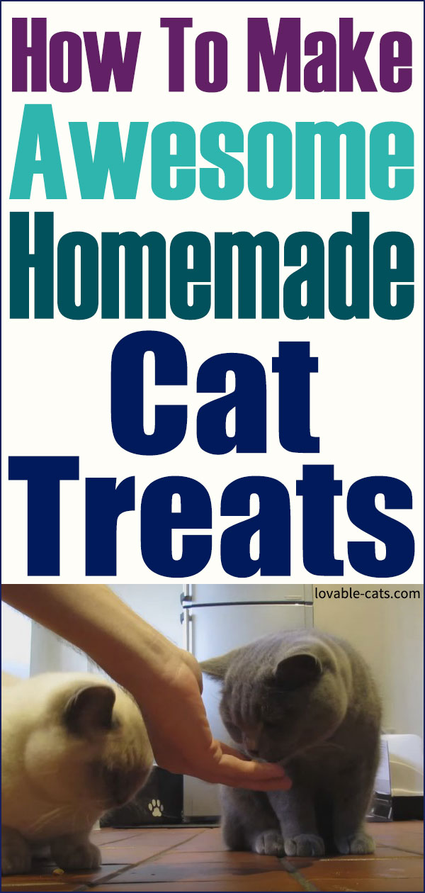 How To Make Awesome Home Made Cat Treats