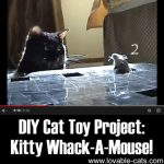 DIY Cat Toy Project: Kitty Whack-A-Mouse!